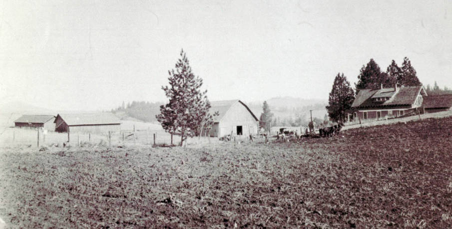 item thumbnail for Deep Creek view looking NE from Old Conklin House; John McManama Place