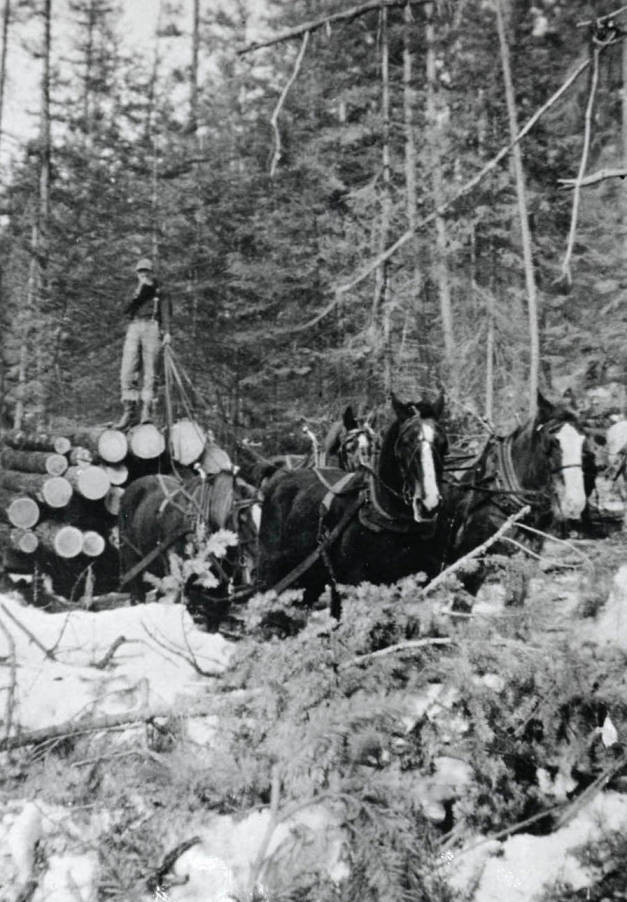 item thumbnail for Dwight Strong hauling logs to sawmill