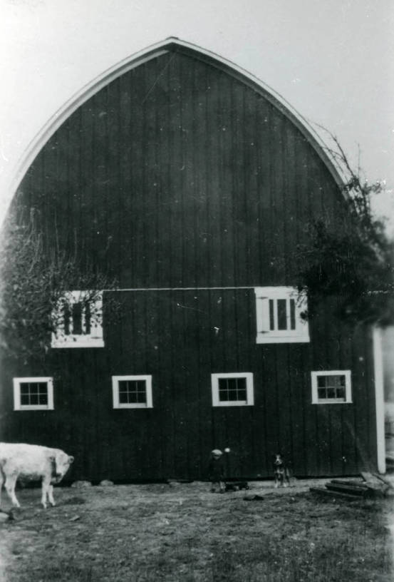 item thumbnail for Soncarty barn