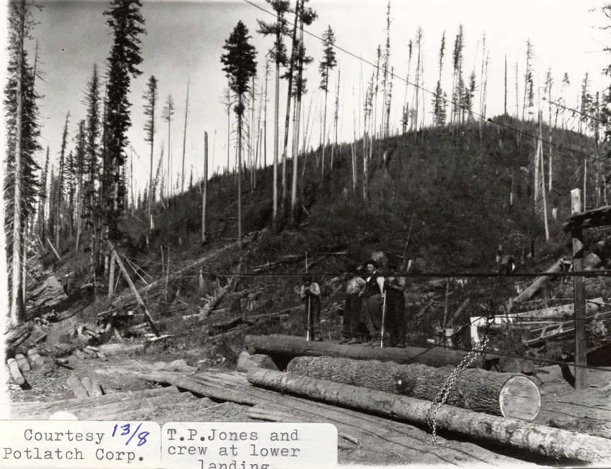 item thumbnail for Logging Crew