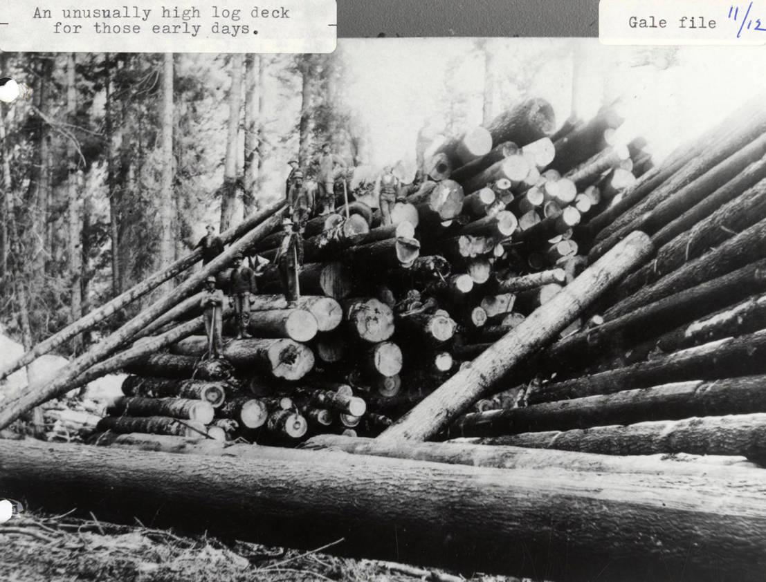 item thumbnail for Log Deck