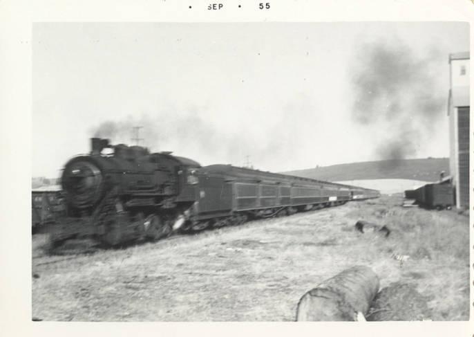 item thumbnail for The Passenger Train