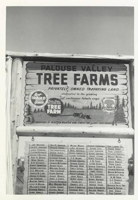 item thumbnail for Palouse Valley Tree Farm Sign