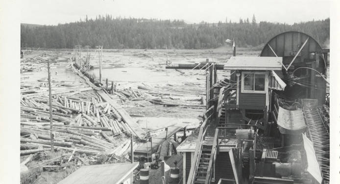 item thumbnail for Dry Log Pond