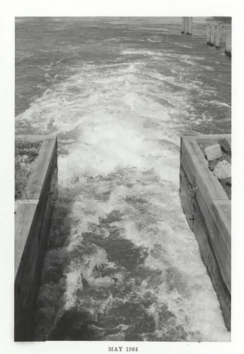item thumbnail for Rushing Water
