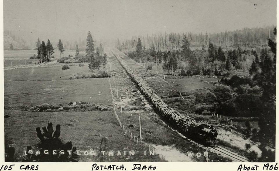 item thumbnail for 105 Train Cars of Logs
