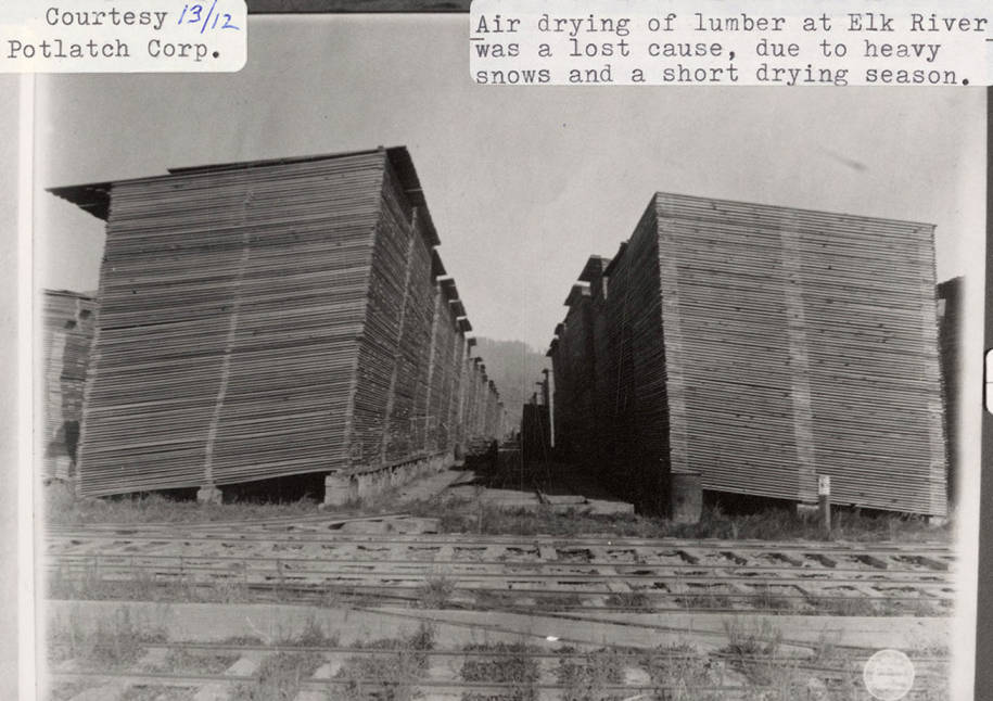 item thumbnail for Lumber at Elk River