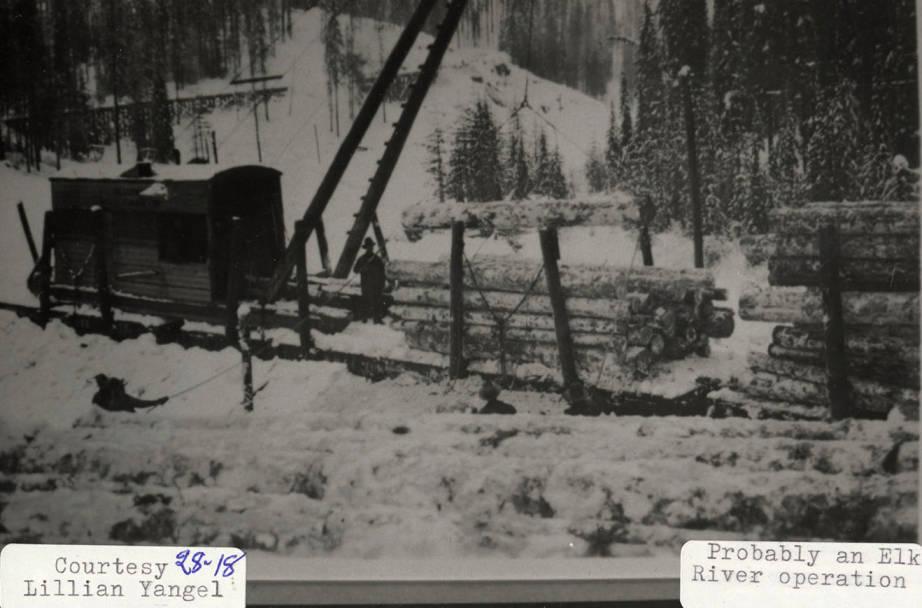 item thumbnail for Elk River Operation