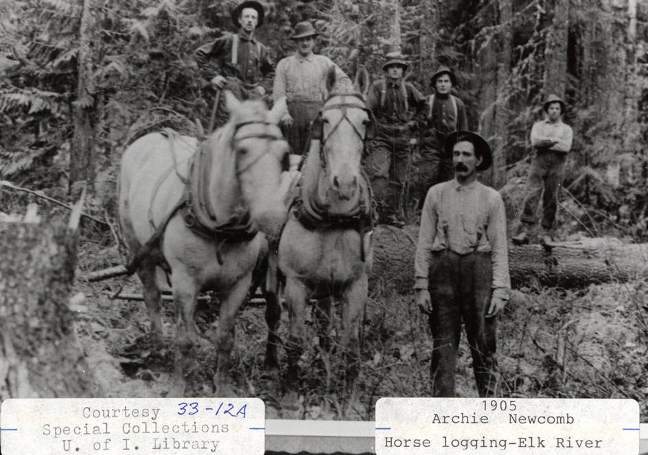 item thumbnail for Archie Newcomb and Horse Logging