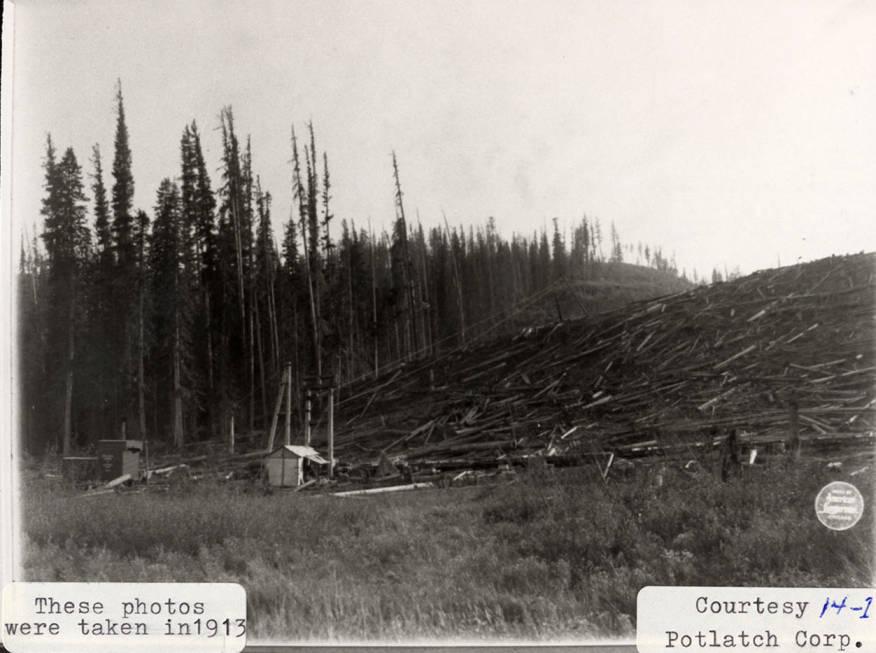item thumbnail for Elk River Logging Operation