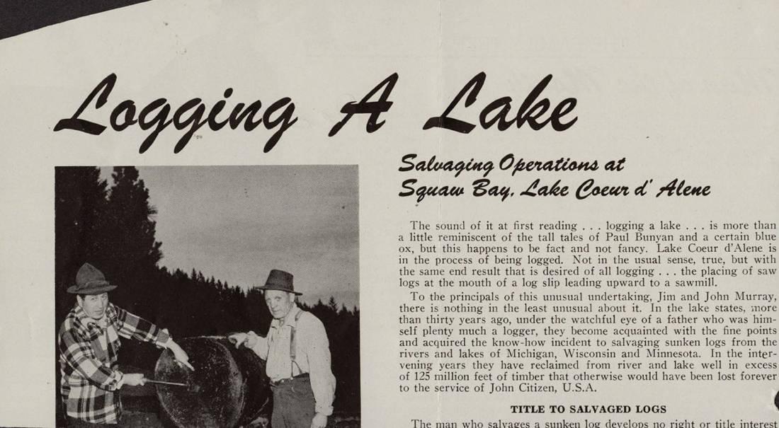 item thumbnail for Lake Logging