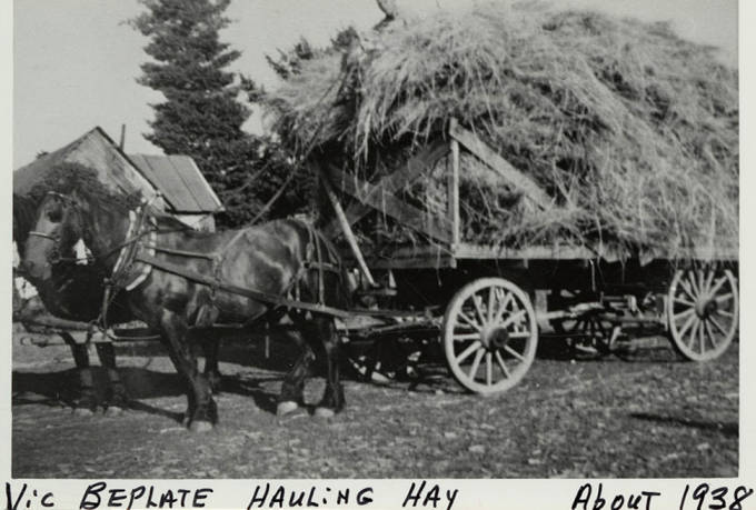 item thumbnail for Vic Beplate Hauling Hay