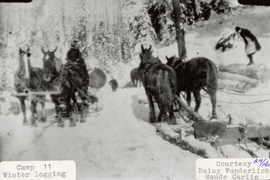 item thumbnail for Winter Logging