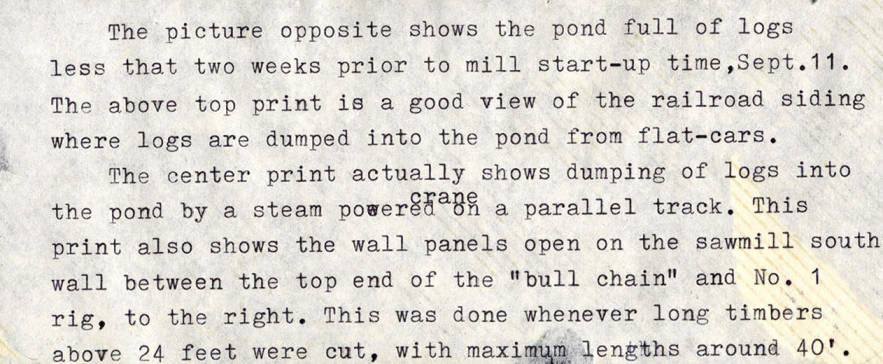 item thumbnail for Log Pond Description