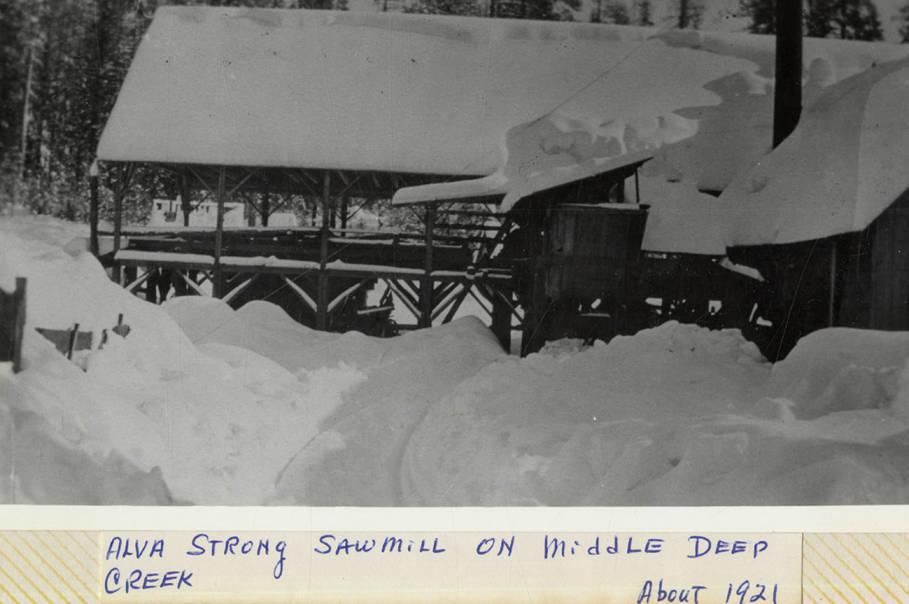 item thumbnail for Alva Strong Sawmill