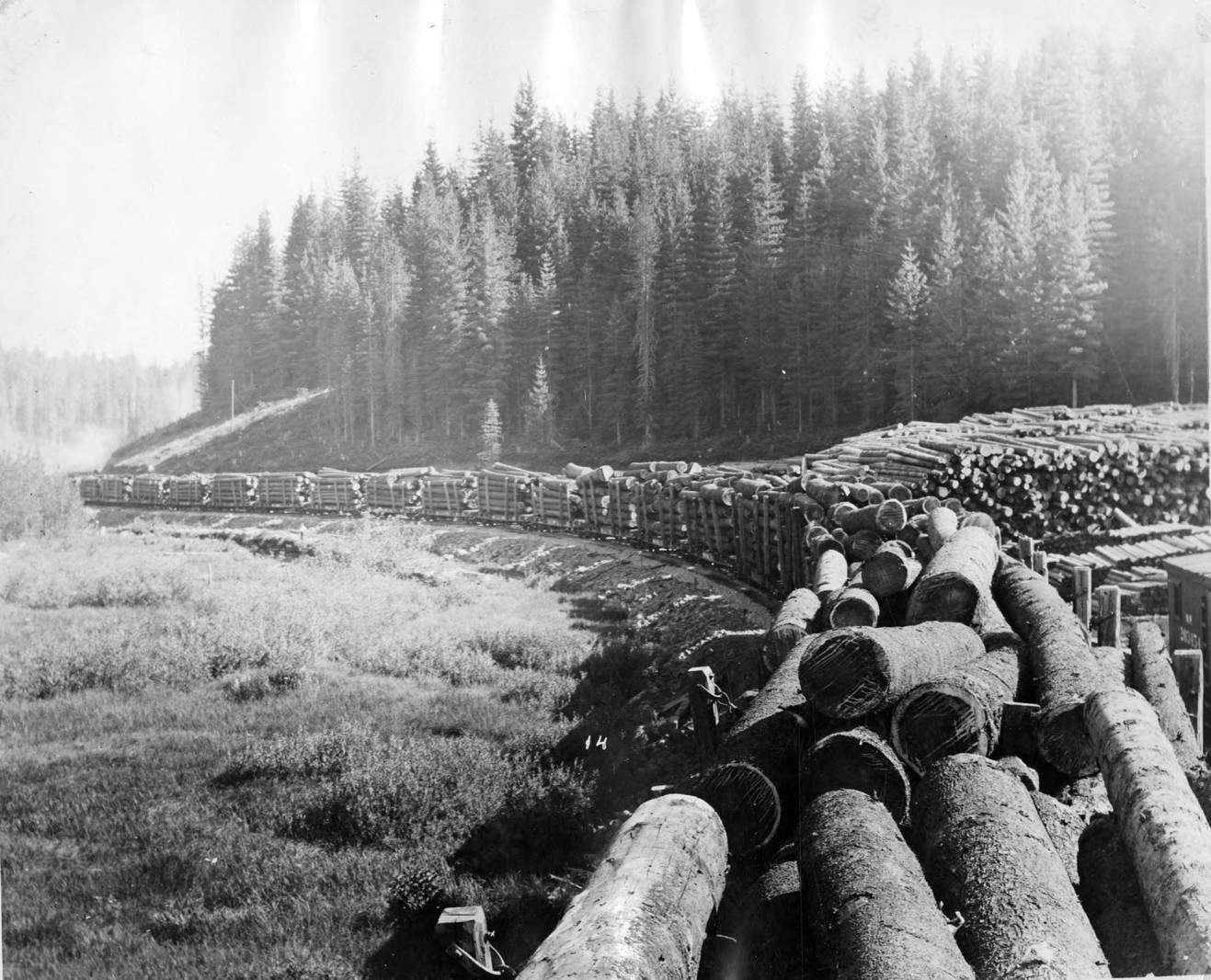 First log train