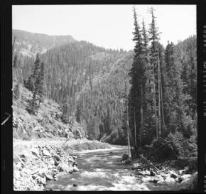 item thumbnail for North Fork of Clearwater River near Elizabeth Creek (Idaho), 1959 [1]