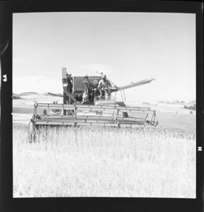 item thumbnail for Wilbur Westberg outfit harvesting on 'The Riggs Place' (Idaho),1959 [7]