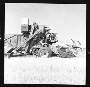item thumbnail for Wilbur Westberg outfit harvesting on 'The Riggs Place' (Idaho),1959 [18]]