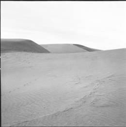item thumbnail for Sand Dunes (Idaho), 1960 [1]