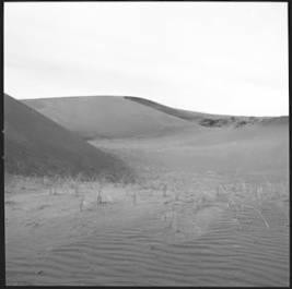 item thumbnail for Sand Dunes (Idaho), 1960 [3]