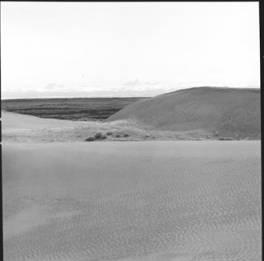 item thumbnail for Sand Dunes (Idaho), 1960 [4]