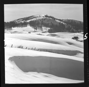 item thumbnail for Moscow (Idaho), winter scenes, 1952 [1]