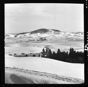 item thumbnail for Moscow (Idaho) from Viola Grade [2]