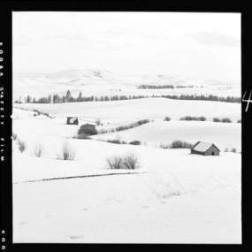 item thumbnail for Moscow (Idaho) from Paradise Ridge [3]