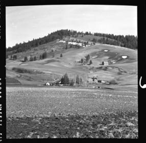 item thumbnail for Tomer's Butte, 1952