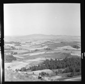 item thumbnail for Moscow (Idaho) from Tomer's Butte, 1952 [1]