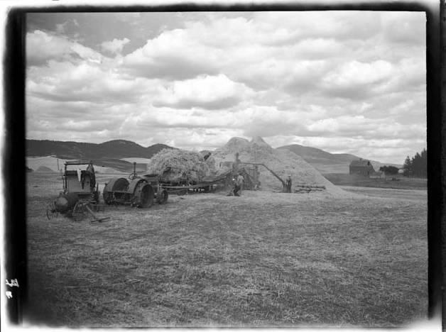 item thumbnail for Palouse region, wheat fields [2]