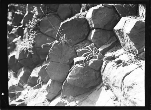 item thumbnail for Joseph Plains (Idaho), 1938 [3]
