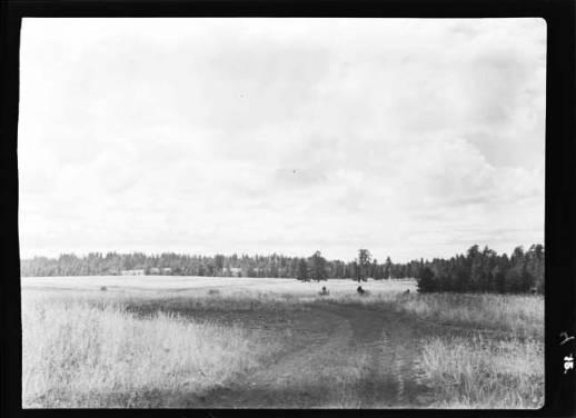 item thumbnail for Joseph Plains (Idaho), 1938 [7]