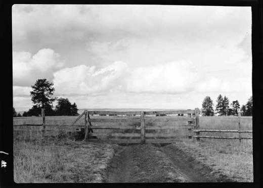 item thumbnail for Joseph Plains (Idaho), 1938 [8]