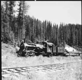 item thumbnail for Train