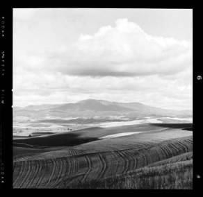 item thumbnail for Moscow (Idaho), 1959 [2]