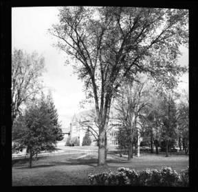 item thumbnail for University of Idaho, Science building, 1959