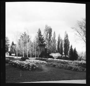 item thumbnail for University of Idaho, 1959 [2]