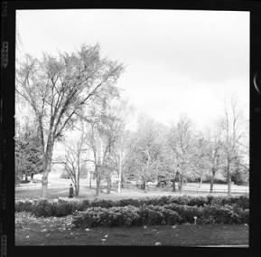 item thumbnail for University of Idaho, 1959 [4]