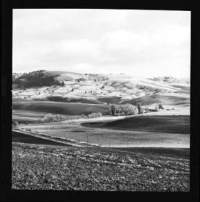 item thumbnail for Paradise Ridge (Idaho), 1959 [1]