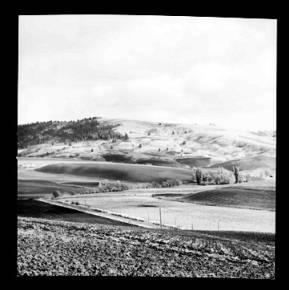 item thumbnail for Paradise Ridge (Idaho), 1959 [2]