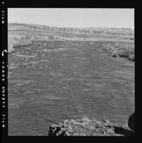 item thumbnail for Palouse River above the bridge at Hooper
