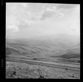 item thumbnail for White Bird Hill (Idaho), 1960 [1]