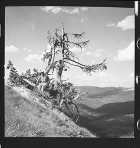 item thumbnail for Freezeout Saddle (Idaho), 1960 [8]