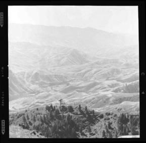 item thumbnail for White Bird (Idaho), 1960 [5]