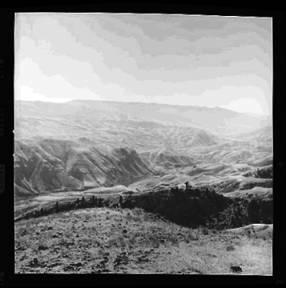 item thumbnail for White Bird (Idaho), 1960 [7]