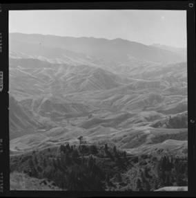 item thumbnail for White Bird (Idaho), 1960 [8]