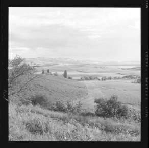 item thumbnail for Moscow (Idaho)[?], 1959 [3]