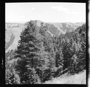 item thumbnail for Moscow (Idaho)[?], 1959 [10]